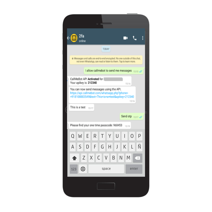 recevied api key on WhatsApp